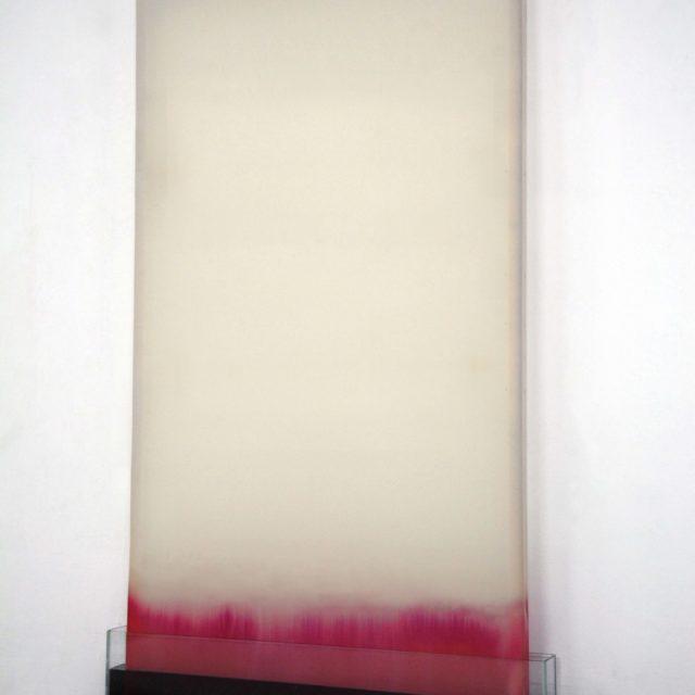 Untitled / Anita de Laforêt / 2018