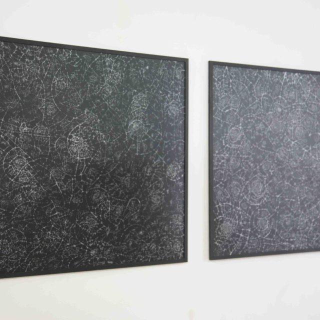Constellations #3 / Samuel Coisne / 2016