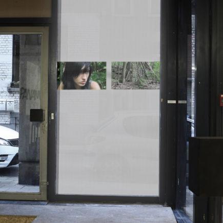 Le Mont Royal / Anne-Lise Seusse / 2011