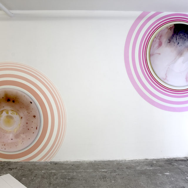 Cerise-Pistache + Vanille-Framboise / Yuna Mathieu-Chovet / 2014