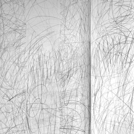 Système perceptif : geste et plante n°4 / Lisa Egio / 2014