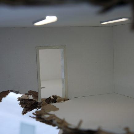 Outhouse / Leander Schönweger / 2018