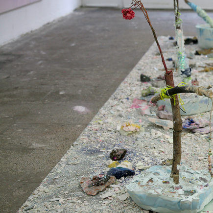The flowers, always the flowers (II) / Stéphane Vervaeke / 2020