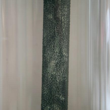 Tree of Diana/Lucas Leffler/2019